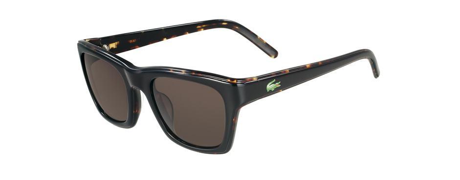 oculos-lacoste-15
